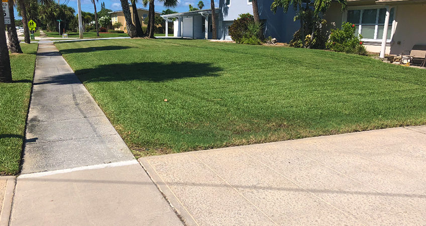 Welcome to Our Brand New Website! - Beachside Lawn Care | Commercial &  Residential Lawn Maintenance