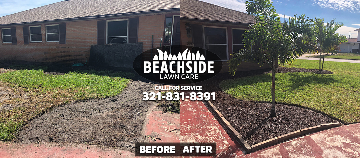 beachside lawn care before after indian harbour beach lawn care