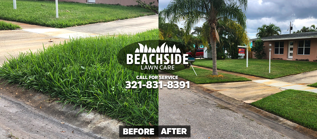 beachside lawn care before after melbourne lawn care