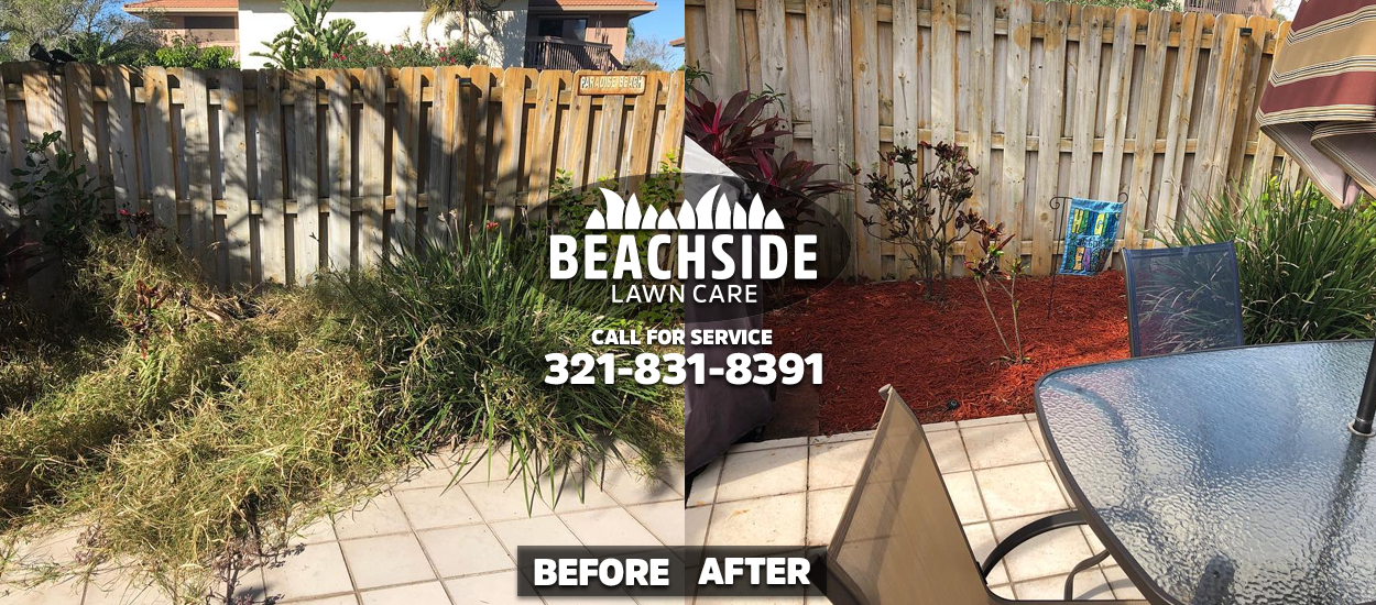 beachside lawn care before after cocoa beach weeding mulch installation