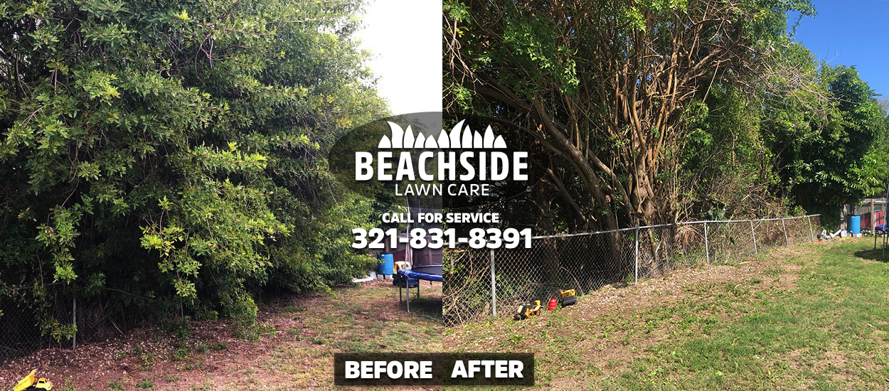 beachside lawn care before after indialantic lawn care
