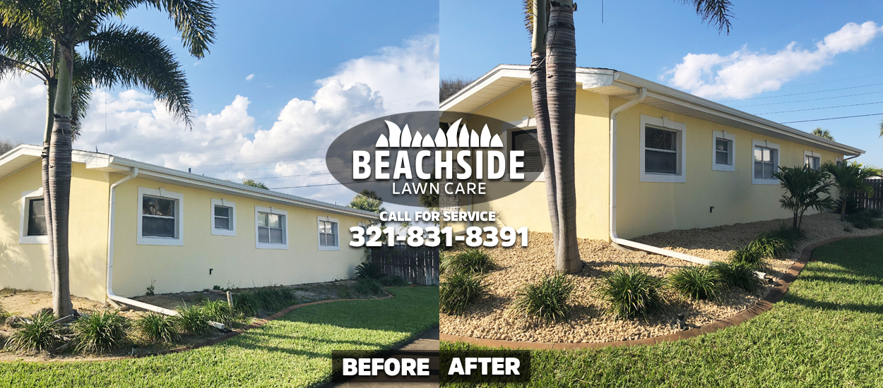 Beachside Lawn Care before after Satellite Beach Landscaping yard cleanup